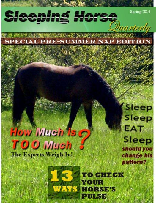 sleeping_horse_quarterly_by_smbaird-d79iq3m
