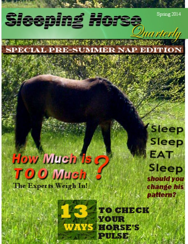 sleeping_horse_quarterly_by_smbaird-d79iq3m