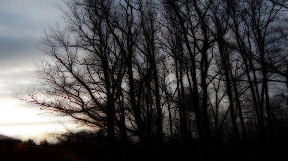 dark march