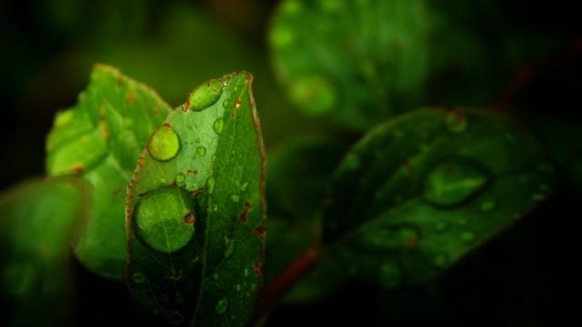 let_it_rain_by_smbaird-d7rzftg