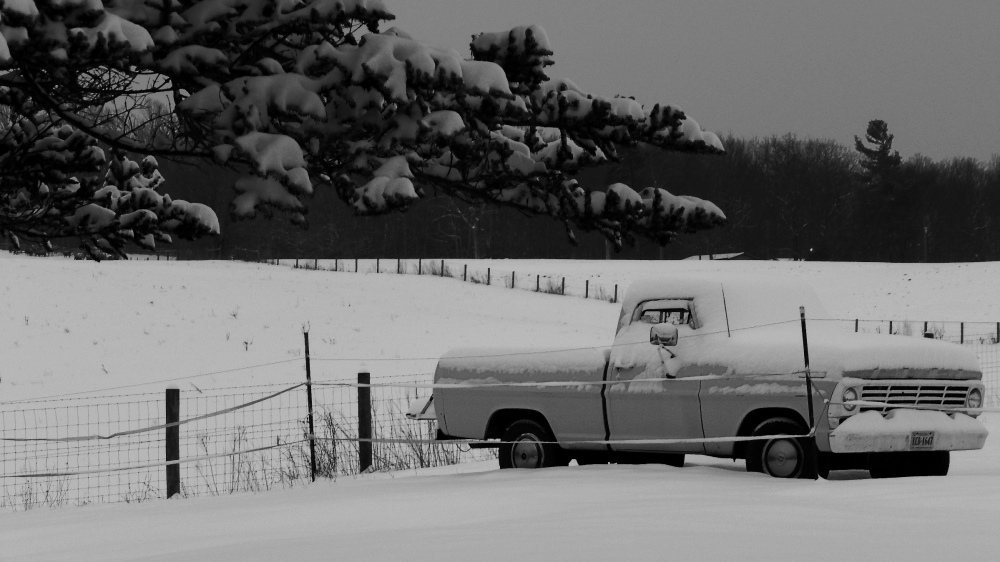 White on Ford