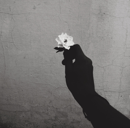 hand-holding-a-flower2 (1)